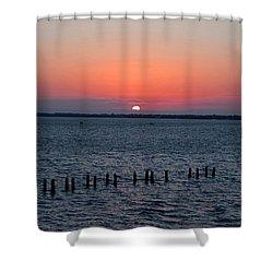 Firefly Finish Shower Curtain