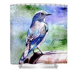 Firehole Bridge Bluebird - Female Shower Curtain