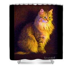 Fireside Feline Shower Curtain