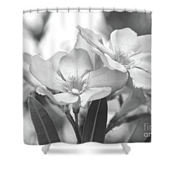 Shower Curtain featuring the photograph Firewalker Sw1 by Wilhelm Hufnagl