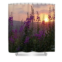 Fireweed Sunset Shower Curtain