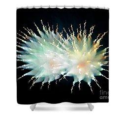 Firework Twin Shower Curtain