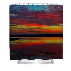 Fireworks From Nature Shower Curtain by Dianne Cowen