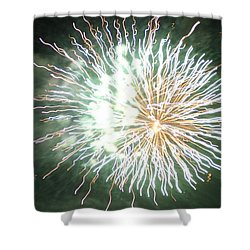 Fireworks In The Park 4 Shower Curtain