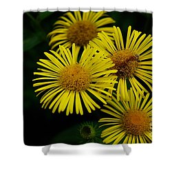 Fireworks In Yellow Shower Curtain by John S