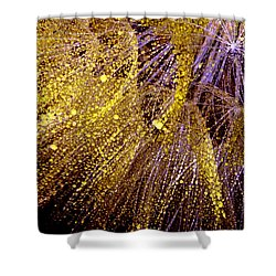 Fireworks Seed Shower Curtain by Sandra Foster
