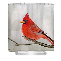 Firey Red Shower Curtain