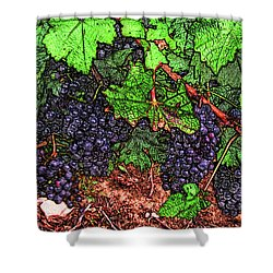 First Came The Grape Shower Curtain
