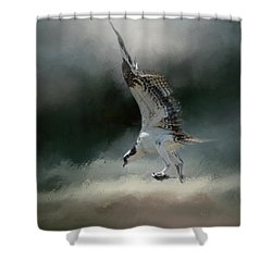 First Catch Of The Morning Osprey Art By Jai Johnson Shower Curtain