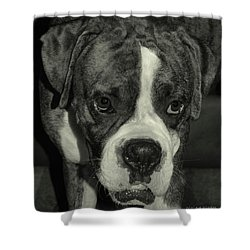 First Day Home Shower Curtain by DigiArt Diaries by Vicky B Fuller