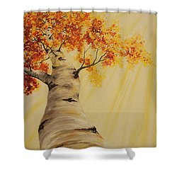 Shower Curtain featuring the painting First Fall Light by Melinda Cummings