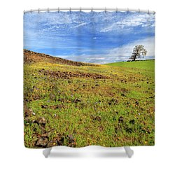 First Flowers On North Table Mountain Shower Curtain by James Eddy