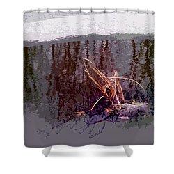 First Freeze Shower Curtain by Spyder Webb