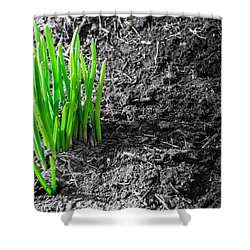 First Green Shoots Of Spring And Dirt Shower Curtain