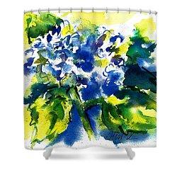 First Hydrangea Shower Curtain