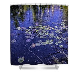 First Ice Shower Curtain