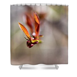 First Leaves Shower Curtain