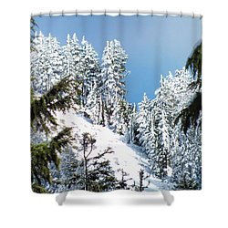First November Snowfall Shower Curtain by Wendy McKennon