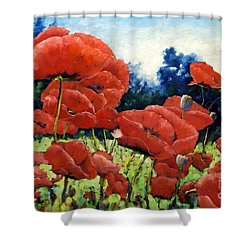 First Of Poppies Shower Curtain by Richard T Pranke