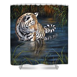 First Reflection Shower Curtain