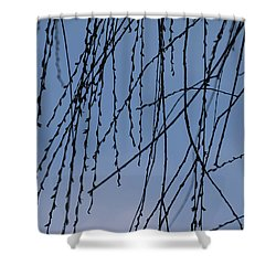 First Reveal - Shower Curtain