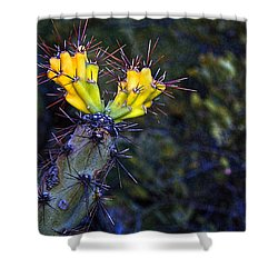 First Signs Of Spring On The Sonoran Desert Shower Curtain