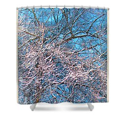 First Snow At Dawn Shower Curtain