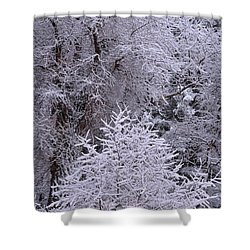 First Snow I Shower Curtain