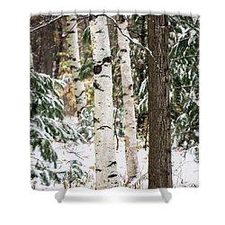 First Snow -  Shower Curtain