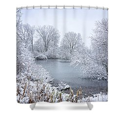 First Snow Shower Curtain by Kathi Mirto