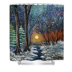 First Snow Shower Curtain by Nancy Mueller