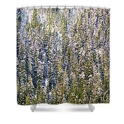 First Snow On Trees Shower Curtain