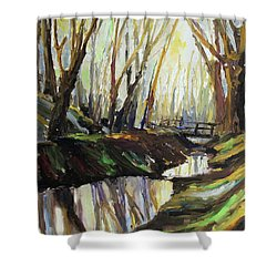 First Sun Of Spring Shower Curtain by Barbara Pommerenke
