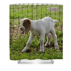 First Twin Shower Curtain by Debby Pueschel