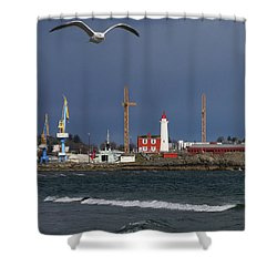 Shower Curtain featuring the photograph Fisgard Photobomber by Rasma Bertz