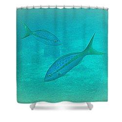 Fish Eye View  Shower Curtain