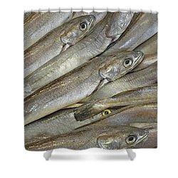 Fish Eyes Shower Curtain by Joe Bonita