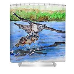 Fish For Lunch Shower Curtain
