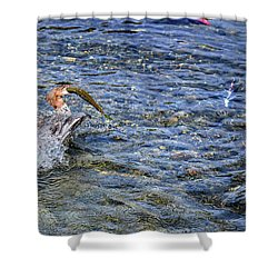 Shower Curtain featuring the photograph Fish Gulp by David Lawson