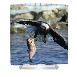 Shower Curtain featuring the photograph Fish In Hand by Coby Cooper