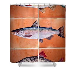 Shower Curtain featuring the ceramic art Fish Mural by Andrew Drozdowicz