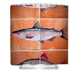 Fish Mural Shower Curtain