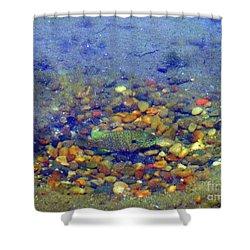 Fish Spawning Shower Curtain