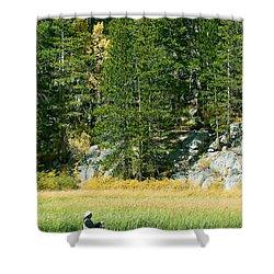 Shower Curtain featuring the photograph Fisherwoman - Eastern Sierra California by Ram Vasudev