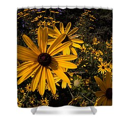 Shower Curtain featuring the photograph Fisheye Flowers by Jay Stockhaus