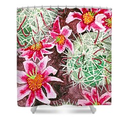 Fishhook Beauty Shower Curtain