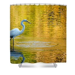 Shower Curtain featuring the photograph Fishing 2 by Wade Brooks