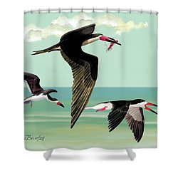 Fishing In The Gulf Shower Curtain
