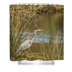 Shower Curtain featuring the photograph Fishing Oceano Lagoon by Art Block Collections