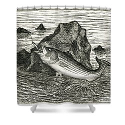 Shower Curtain featuring the photograph Fishing The Rocks by Charles Harden